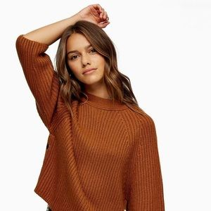 NWT Topshop tobacco brown sweater. Size xs